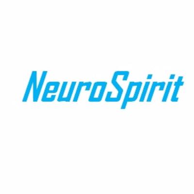 NeuroSpirit